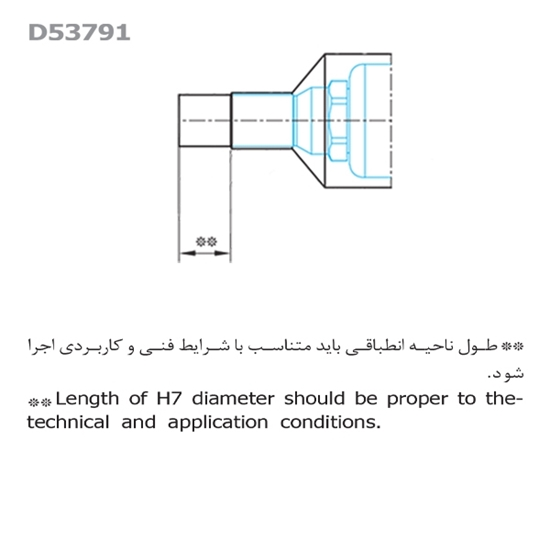 Picture of Raha 536 Series Nozzle Model D5379